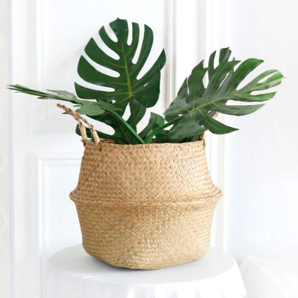 cestas de mimbre para plantas