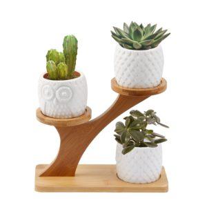Macetas de cerámica búhos blancos con soporte de madera bambú