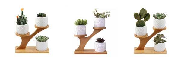 Macetas búho formas creativas con cactus