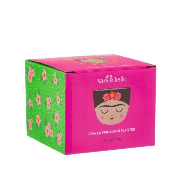 Mini macetas Frida Kahlo caja Sass and Belle Decoplantia