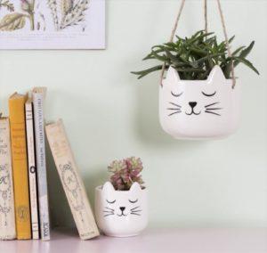 Macetas decoradas de gatos Sass and belle Decoplantia