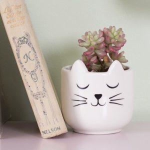 Mini maceta gato cerámica Sass and Belle Decoplantia